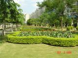 20051155.com